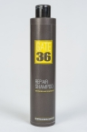 GATE 36  Repair shampoo (Восстанавливающий шампунь), 3000/250 ml
